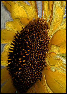 Art Print featuring the photograph Sunflower Side by Lou Belcher