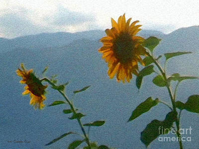 Photograph - Sunflower Sunset by Cristophers Dream Artistry