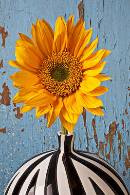 Photograph - Sunflower Vase by Garry Gay