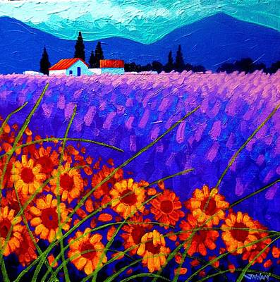 Sunflower Vista Art Print by John  Nolan