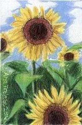 Drawing - Sunflowers by Ana Tirolese