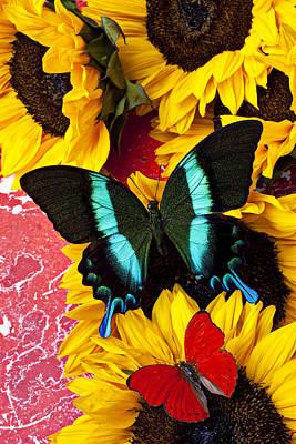 Sunflowers And Butterflies Art Print by Garry Gay