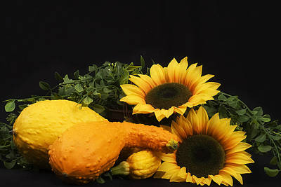Photograph - Sunflowers And Squash by Trudy Wilkerson