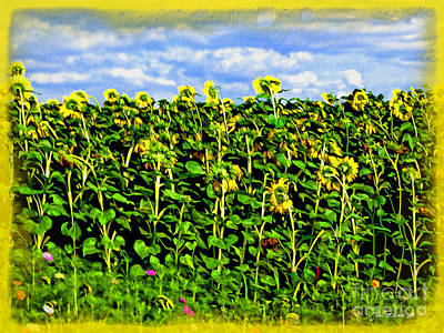 Sunflowers In France Art Print by Joan  Minchak