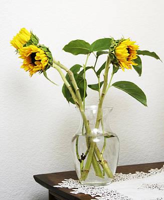 Photograph - Sunflowers by Masha Batkova