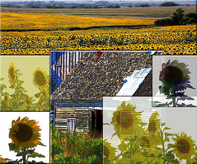 Sunflower Photograph - Sunflowers On The Prairie by Marie Jamieson