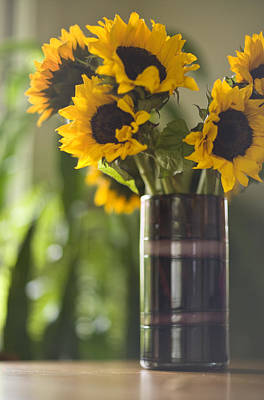 Sunflowers Royalty-Free and Rights-Managed Images - Sunflowers to the Sun by Mike Reid