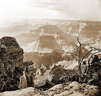 Photograph - Sunlight In The Grand Canyon by M K Miller