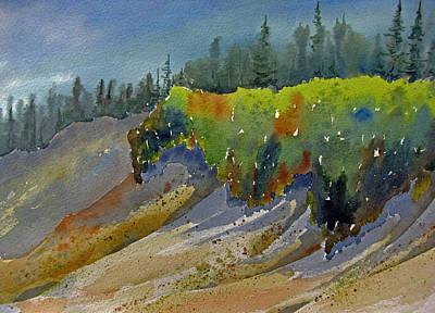 Sunlit Lichen Art Print by Ramona Kraemer-Dobson