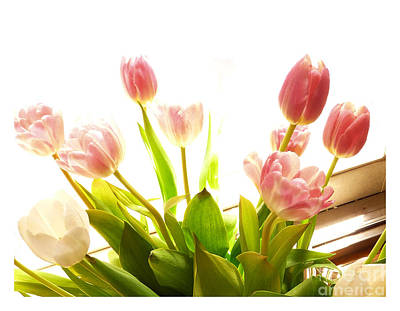 Photograph - Sunlit Tulips  by Margie Avellino