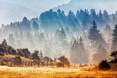 Rhodope Mountains Photograph - Sunny Morning by Evgeni Dinev