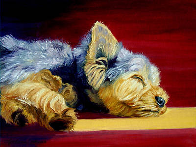 Warmth Painting - Sunny Patch Yorkshire Terrier by Lyn Cook