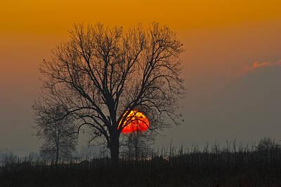 Sunrise - 4810 Art Print