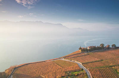 Sunrise At Lavaux Vineyard Terraces Art Print by Harri's Photography