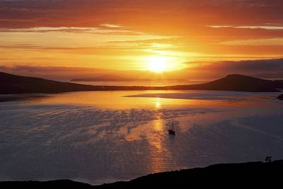 Carcass Island Photograph - Sunrise, Falkland Islands by Charlotte Main