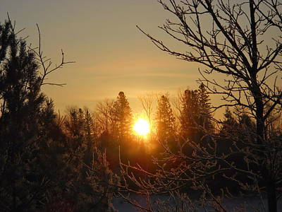 Photograph - Sunrise In The Trees by Kent Lorentzen