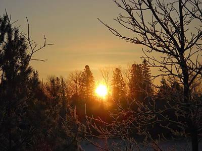 Photograph - Sunrise In The Trees by Kent Lorentzen