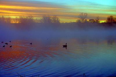 Sunrise On Duck Pond Art Print by Laurie Prentice
