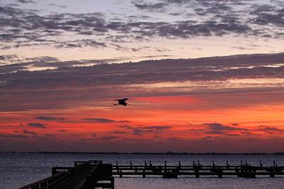 Sunrise On The Indian River Art Print