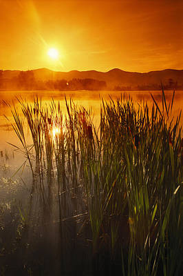 Natural Forces Photograph - Sunrise Over A Misty Pond by Richard Nowitz