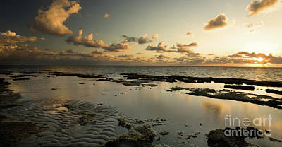 Biscayne Bay Photograph - Sunrise Over Fossil Reef by Matt Tilghman