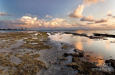 Miami Skyline Photograph - Sunrise Over Miami Beach by Matt Tilghman
