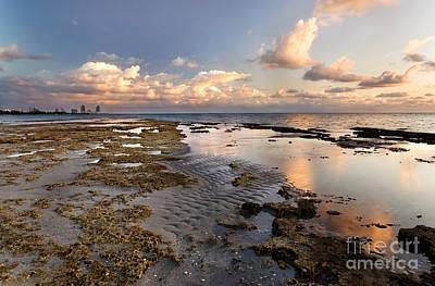Landscape Photograph - Sunrise Over Miami Beach by Matt Tilghman