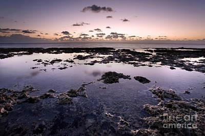 Sunrise Over Tide Pools Art Print by Matt Tilghman