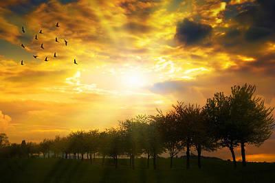 Day Break Photograph - Sunrise Over Tree Line by Amanda Elwell