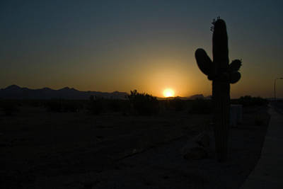 Print featuring the photograph Sunrise Saguaro by Tom Singleton