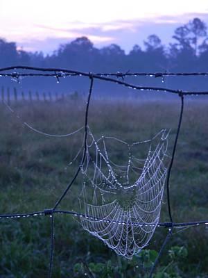 Sunrise Web Original