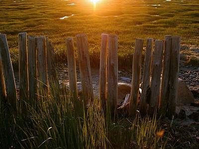 Photograph - Sunscapes A Long Forgotten Fence On The St. Lawrence River by William OBrien