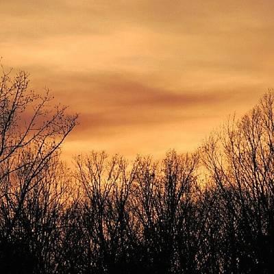 Sundown Wall Art - Photograph - Sunset & Trees by Kelli Stowe
