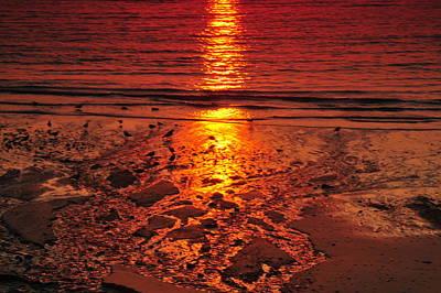Sunset 4 Art Print by Jenny Potter