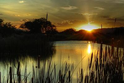 Sunset And Cattails Art Print by Tam Ryan
