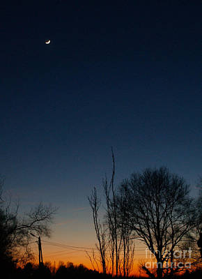 Photograph - Sunset And Moonshine by Michael Canning
