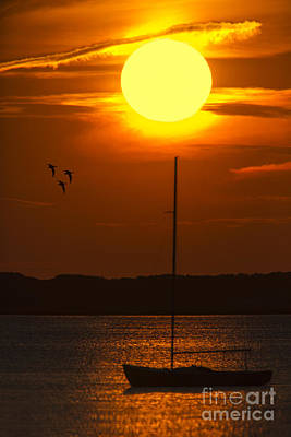 Photograph - Sunset At Cape Cod by Susan Candelario
