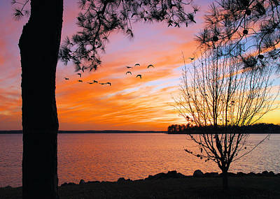 Photograph - Sunset At Lake Murray by Mike Covington