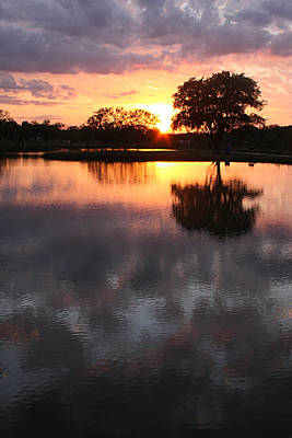 Photograph - Sunset At Nob Hill by Joseph Jennings