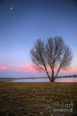 Photograph - Sunset At The Lake by Jim And Emily Bush