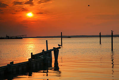 Sunset Bay V Art Print by Steven Ainsworth