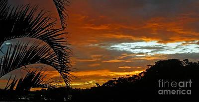 Sunset Behind The Palms Art Print by Kaye Menner
