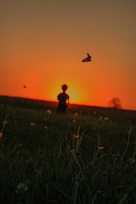 Photograph - Sunset Butterflies by Emily Stauring