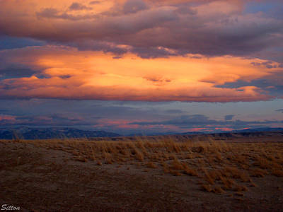 Photograph - Sunset by C Sitton