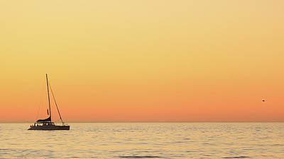 Sunset Cruise At Cape Town Art Print by Tony Hawthorne