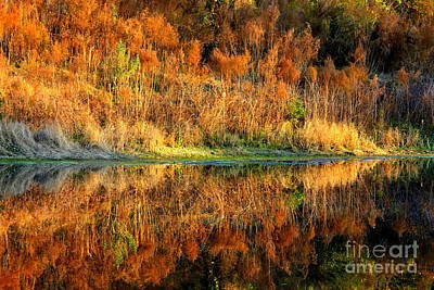 Reflection On Pond Photograph - Sunset Glow On The Pond by Carol Groenen