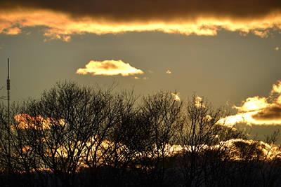 Photograph - Sunset Gold by Bonnie Myszka