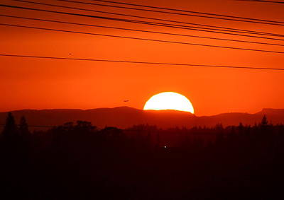 Photograph - Sunset In August by Rima Biswas