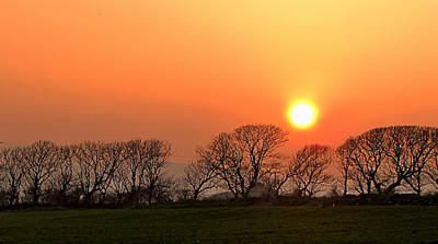 Art Print featuring the photograph Sunset In Dingle by Barbara Walsh