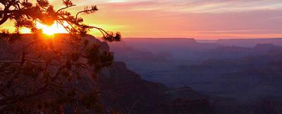 Sunset In Grand Canyon Art Print by Olga Vlasenko